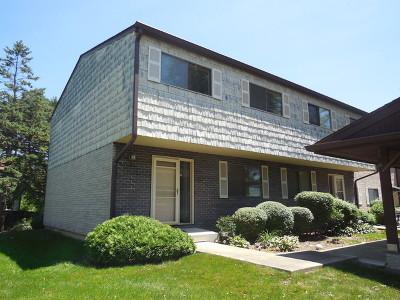 Wheeling Condo/Townhouse For Sale: 441 Commanche Trail #441