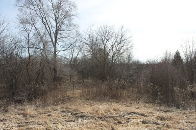 Elburn Residential Lots & Land For Sale: Lot 1 Fabyan Parkway