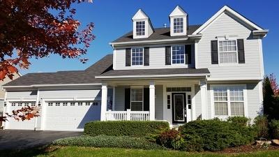 Elgin Single Family Home For Sale: 309 Red Rock Lane