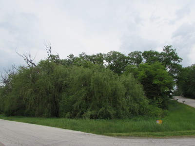 Elburn Residential Lots & Land For Sale: Lot 53 Nottingham Drive