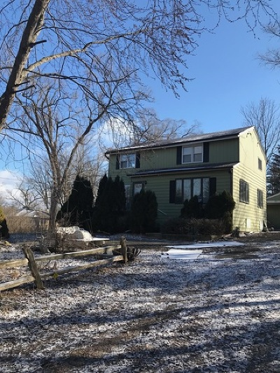 Palatine Single Family Home For Sale: 55 South Clyde Avenue
