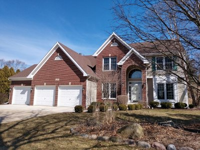 Algonquin Single Family Home For Sale: 1475 Stonegate Road