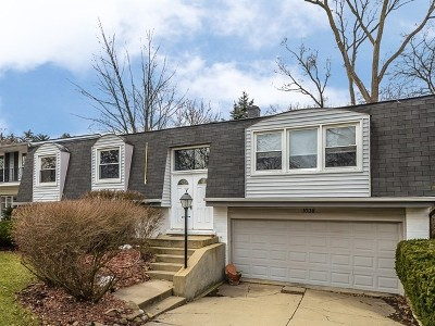Buffalo Grove Single Family Home For Sale: 1038 Cambridge Drive