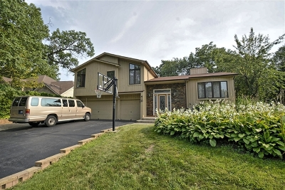 Bolingbrook Single Family Home For Sale: 410 York Street