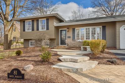 Glen Ellyn Single Family Home For Sale: 81 North Parkside Avenue