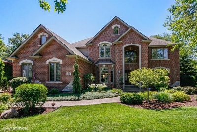 Downers Grove Single Family Home For Sale: 733 Millbrook Drive