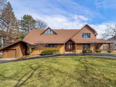 Glen Ellyn Single Family Home New: 211 Bryant Avenue