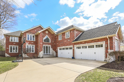 Naperville Single Family Home For Sale: 958 North Loomis Street