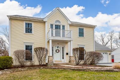 Glen Ellyn Single Family Home For Sale: 79 Brandon Avenue