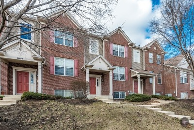 Naperville Condo/Townhouse For Sale: 1010 Bradford Drive