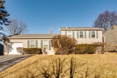 Schaumburg Single Family Home For Sale: 1510 Penrith Place