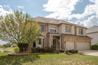 Plainfield Single Family Home For Sale: 22601 Deer Path Lane