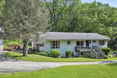 Algonquin Single Family Home For Sale: 2204 Cary Road