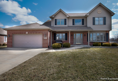 Woodridge Single Family Home For Sale: 1661 Witham Lane