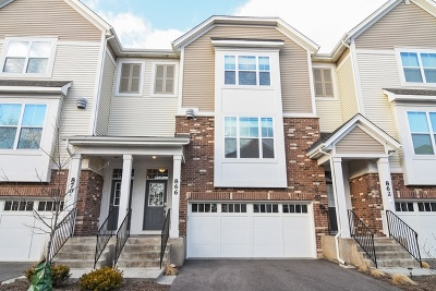 Palatine Condo/Townhouse For Sale: 866 West Chase Lane