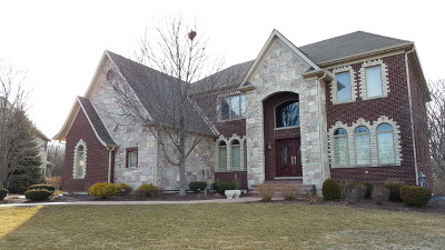 Algonquin Single Family Home For Sale: 18 Springbrook Lane