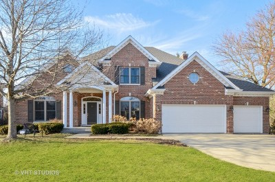 Wheaton Single Family Home For Sale: 1121 Foothill Drive