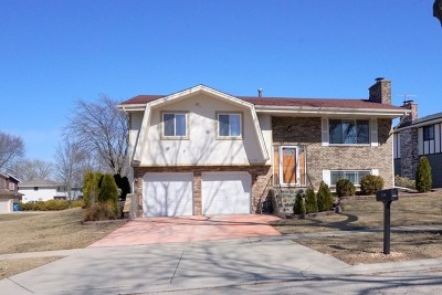Schaumburg Single Family Home For Sale: 1170 Saylesville Lane