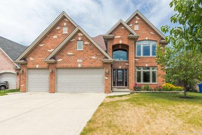 Mount Prospect Single Family Home For Sale: 2010 Celtic Glen Drive