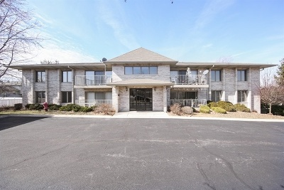 Lockport Condo/Townhouse For Sale: 1011 Ashley Court #1C