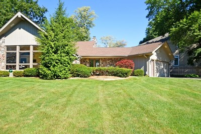 Wheaton Single Family Home For Sale: 1124 Aurora Way
