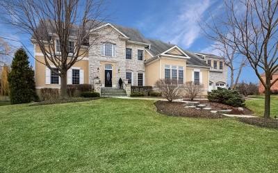 Burr Ridge Single Family Home For Sale: 7981 Greenbriar Court