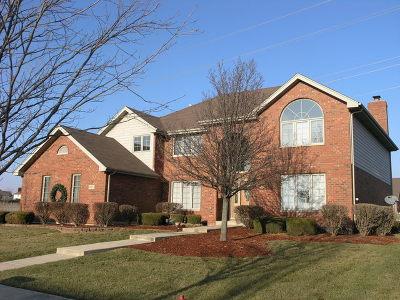 Frankfort Single Family Home For Sale: 20077 Brendan Street