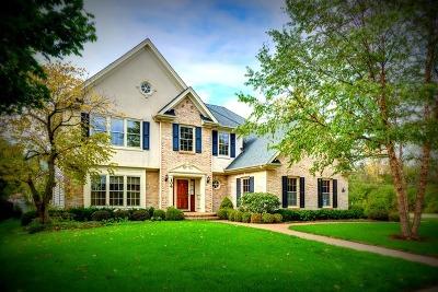 Glen Ellyn Single Family Home For Sale: 106 South Montclair Avenue