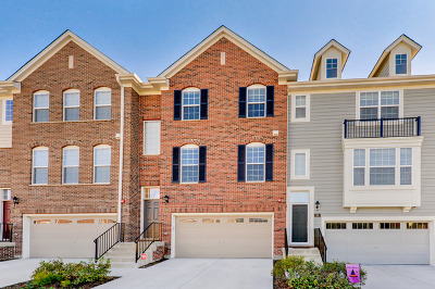 Schaumburg Condo/Townhouse For Sale: 63 Kevin Andrew Lane