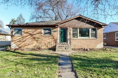 Mount Prospect Single Family Home For Sale: 211 North Wille Street