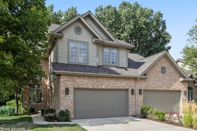 Western Springs IL Condo/Townhouse For Sale: $435,000