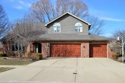 Mokena Single Family Home For Sale: 10658 Fintan Court