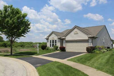 Huntley Single Family Home For Sale: 11515 Windsor Court