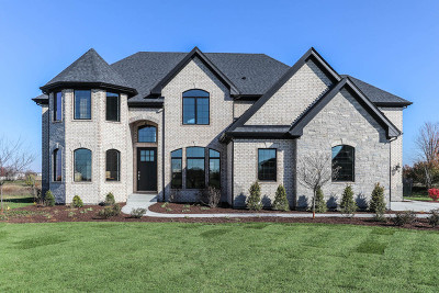 Plainfield Single Family Home For Sale: 25846 West Prairie Hill Lane