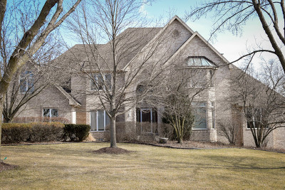 Homer Glen Single Family Home For Sale: 16431 South Kensington Drive South