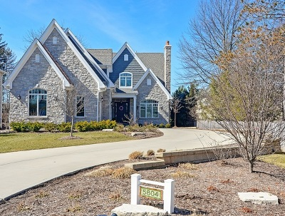 Hinsdale Single Family Home For Sale: 5804 South Garfield Street
