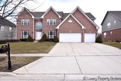 Streamwood Single Family Home For Sale: 409 Elderberry Lane