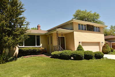 Orland Park Single Family Home For Sale: 8540 Hemlock Street