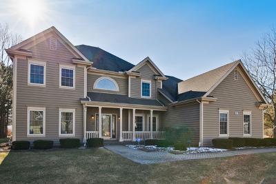 Buffalo Grove Single Family Home For Sale: 2821 Daulton Drive