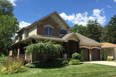 Arlington Heights Single Family Home For Sale: 128 South Chestnut Avenue