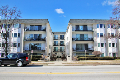 Wilmette Condo/Townhouse New: 715 Ridge Road #1AN