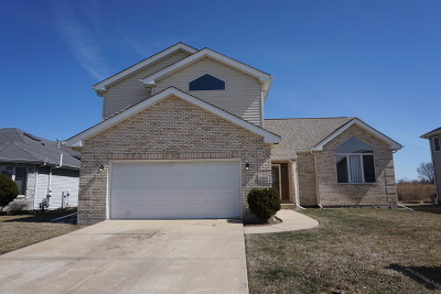 Sauk Village Single Family Home For Sale: 22821 Southbrook Drive