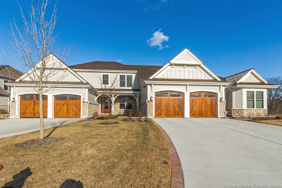 Lake Forest Condo/Townhouse New: 1691 Elderberry Court