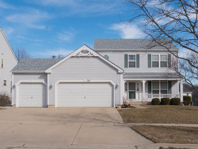 Streamwood Single Family Home For Sale: 127 Buckskin Lane