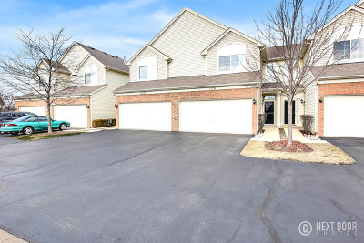 Lockport Condo/Townhouse For Sale: 17578 Gilbert Drive