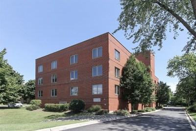 Westmont Condo/Townhouse For Sale: 417 North Cass Avenue #3B