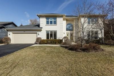 Buffalo Grove Single Family Home For Sale: 440 Newtown Drive