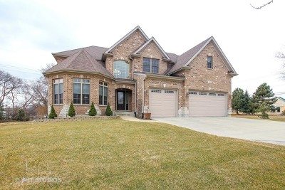 Addison IL Single Family Home New: $648,900