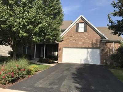 Plainfield Single Family Home For Sale: 12533 Lily Lane