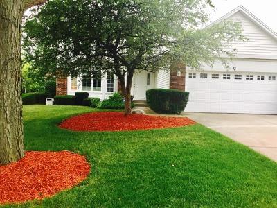 Buffalo Grove Single Family Home For Sale: 83 Fabish Court